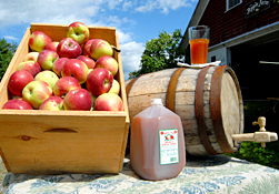 Maine Commercial & Agricultural Photography - Fresh Apple Cider